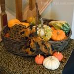 Basket Full of Gourds
